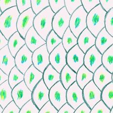 Kado kinrin koi karpfen steckbrief for Steckbrief karpfen