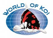 World of Koi